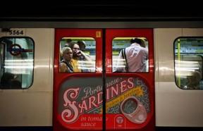 Sardine train